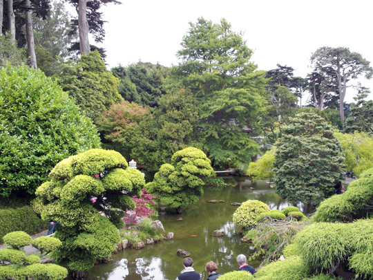 Postcard from san francisco 2 the japanese tea garden for Koi pond japanese tea garden san francisco